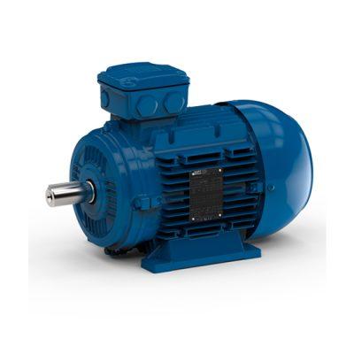 IEC standard motors